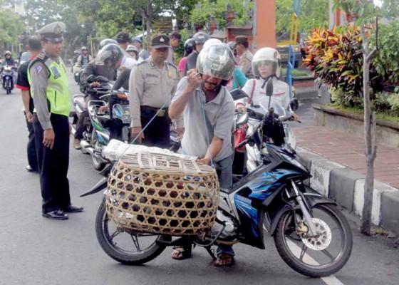 Nusabali.com - angkut-ayam-kena-razia