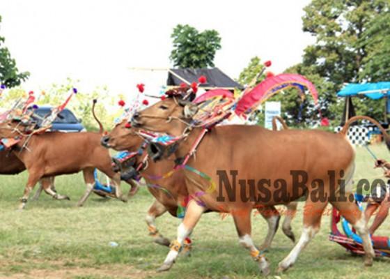 Nusabali.com - digelar-di-awal-musim-tanam-padi-berharap-penen-berlimpah