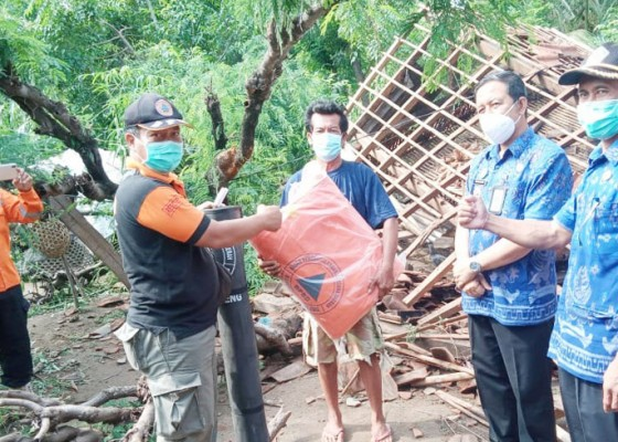 Nusabali.com - bpbd-buleleng-dan-camat-gerokgak-salurkan-bantuan-untuk-korban-pohon-tumbang