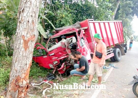 Nusabali.com - pecah-ban-truk-seruduk-pohon-perindang