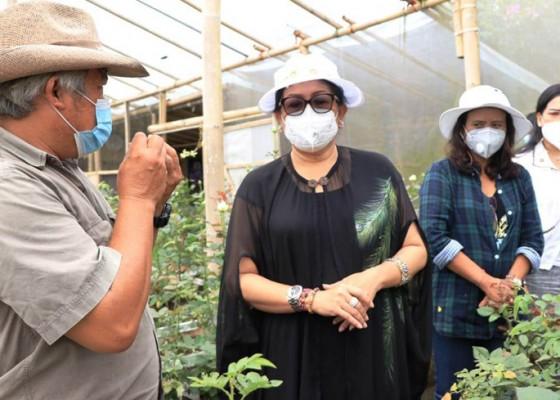 Nusabali.com - putri-koster-ajak-florist-bali-gunakan-bunga-hasil-pertiwi-tanah-dewata