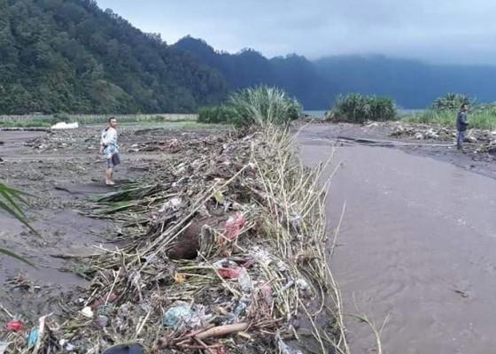 Nusabali.com - diterjang-banjir-puluhan-hektare-lahan-pertanian-rusak
