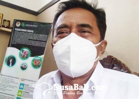 Nusabali.com - 95-persen-desa-di-buleleng-sudah-salurkan-blt-dd