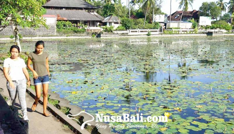 www.nusabali.com-kolam-candidasa-segera-dijadikan-objek-taman-air