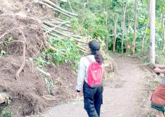Nusabali.com - jalan-di-banjar-sega-masih-tertimbun-material-longsor