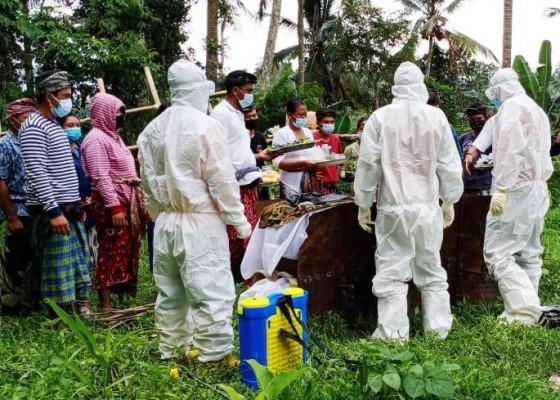 Nusabali.com - lansia-meninggal-akibat-covid-19