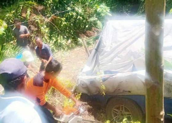 Nusabali.com - angin-kencang-pohon-jaka-tumbang-timpa-mobil