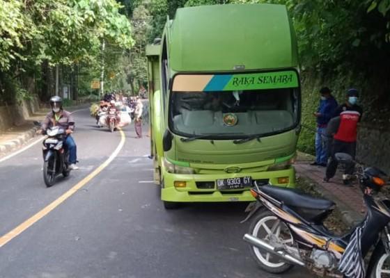 Nusabali.com - pasutri-tabrak-truk-mogok-di-goa-jepang