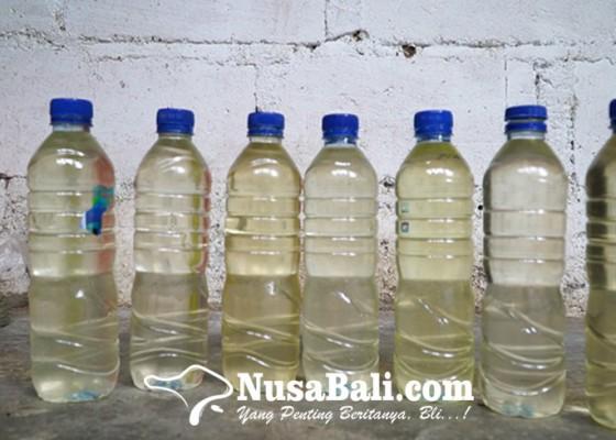 Nusabali.com - lengis-tandusan-begini-proses-pembuatan-minyak-kelapa-tradisional-khas-bali