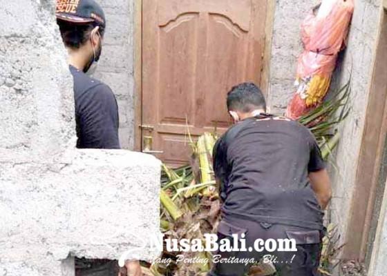 Nusabali.com - pohon-kelapa-tumbang-timpa-rumah