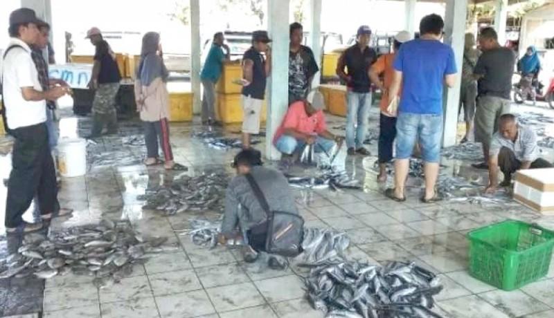www.nusabali.com-2021-penjualan-ikan-ditarget-naik-2-kali-lipat