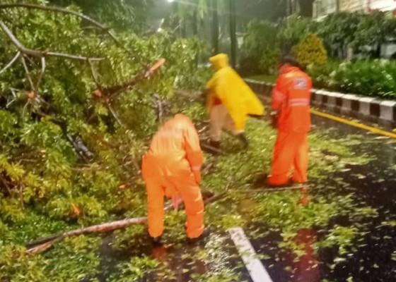 Nusabali.com - pohon-tumbang-timpa-kabel-dan-tutup-akses-jalan