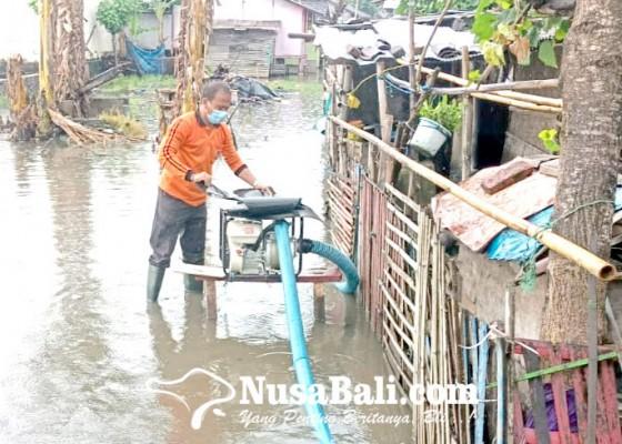 Nusabali.com - rumah-warga-di-pengambengan-tergenang-air