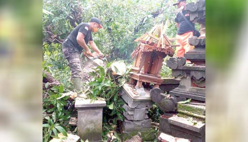 www.nusabali.com-pohon-tumbang-timpa-sanggah-lukai-pemotor