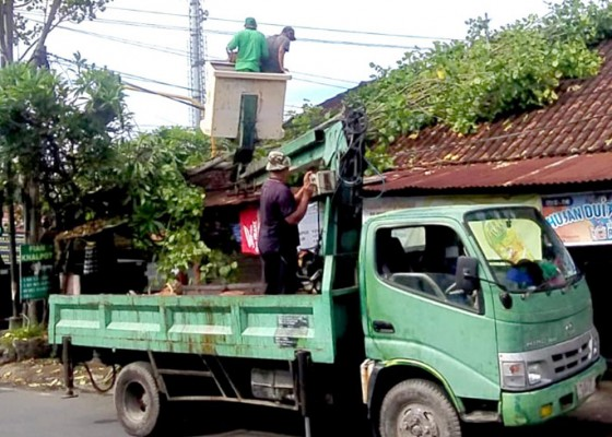 Nusabali.com - dinas-lhk-denpasar-kekurangan-mobil-tangga