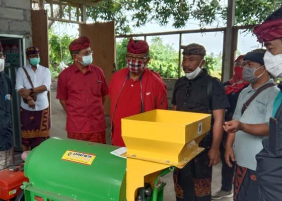 Nusabali.com - anggota-komisi-iv-dpr-ri-made-urip-gelontor-bantuan-sektor-pertanian
