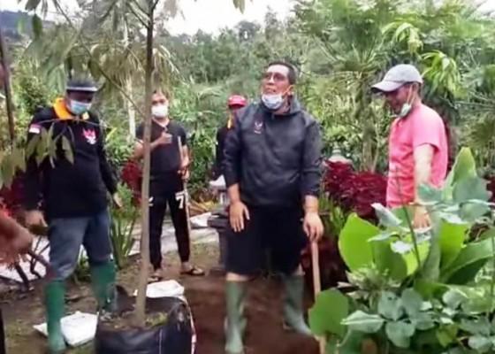 Nusabali.com - bupati-sanjaya-ajak-masyarakat-tanam-durian-musang-king