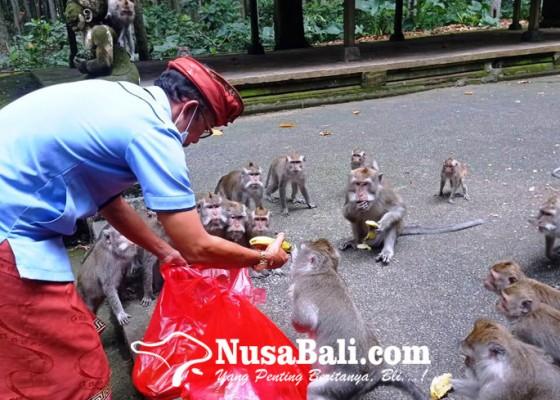 Nusabali.com - biaya-operasional-hanya-cukup-untuk-setahun