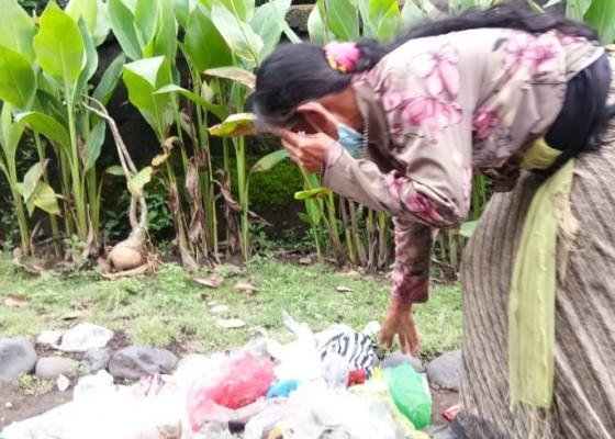 Nusabali.com - demi-beras-dadong-nori-pungut-sampah