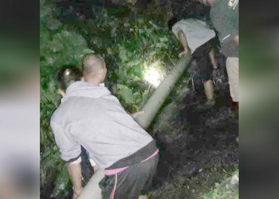 Nusabali.com - pipa-tertimpa-pohon-layanan-air-terganggu