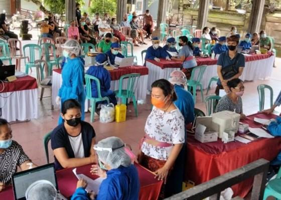 Nusabali.com - vaksinasi-4-kelurahandesa-di-ubud-sasar-24327-warga