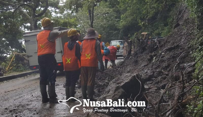 www.nusabali.com-longsor-disertai-pohon-tumbang-di-pancasari-lumpuhkan-singaraja-denpasar