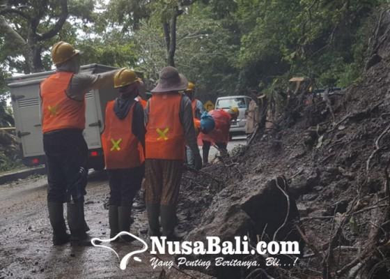 Nusabali.com - longsor-disertai-pohon-tumbang-di-pancasari-lumpuhkan-singaraja-denpasar