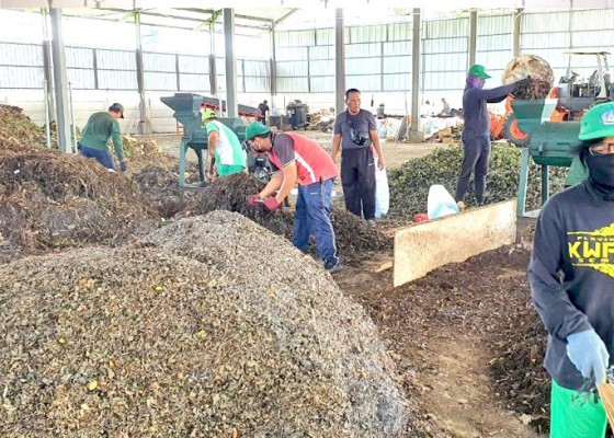 Nusabali.com - tpst-mengwitani-hasilkan-15-ton-pupuk-kompos-per-hari