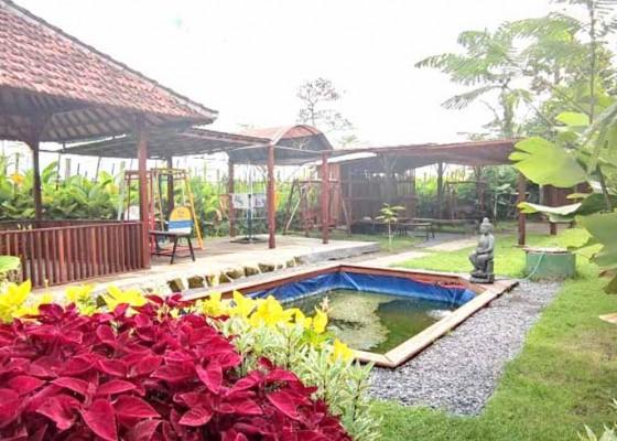 Nusabali.com - the-tetamian-ecolodge-bali-kembangkan-wahana-wisata-di-batuan