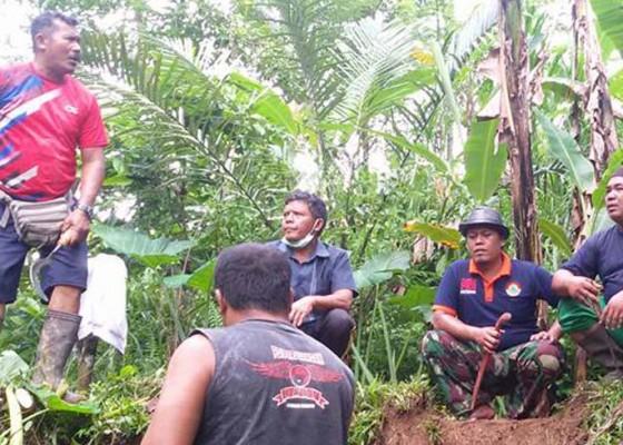 Nusabali.com - warga-gotong-royong-bikin-jalan-setapak