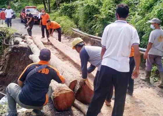Nusabali.com - jalan-di-sekumpul-kembali-dapat-perbaikan-darurat