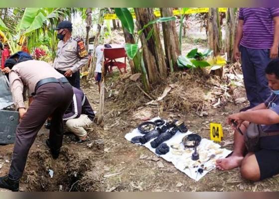Nusabali.com - sepasang-pratima-ditemukan-terkubur-di-pekarangan-warga