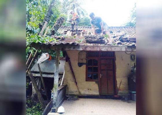 Nusabali.com - pohon-melinjo-tumbang-timpa-rumah