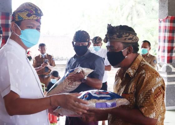 Nusabali.com - wabup-suiasa-serahkan-benih-padi-inbrida-dan-cabai-kepada-petani
