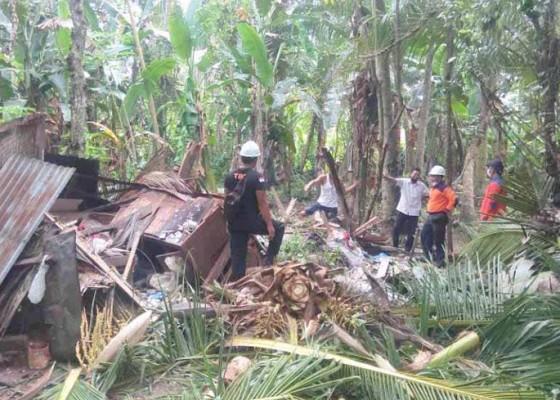 Nusabali.com - rumah-ditimpa-pohon-kelapa-konten-diselamatkan-lemari