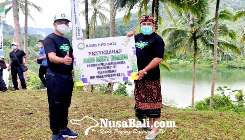 www.nusabali.com-sinergi-dengan-pemkab-bpd-bali-sumbang-2000-bibit-bambu-petung
