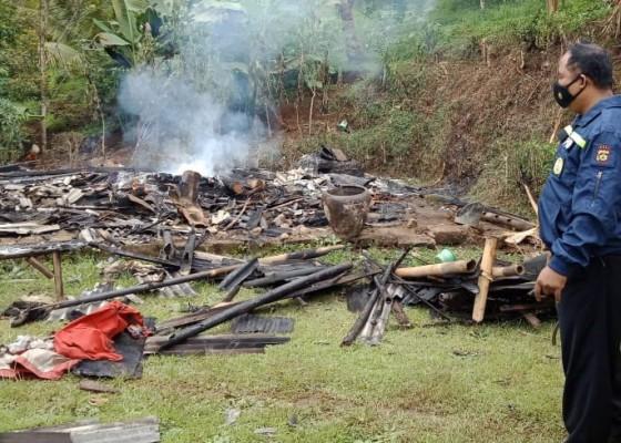 Nusabali.com - ditinggal-petik-sayuran-rumah-tinggal-puing