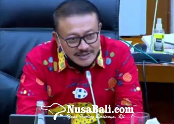 Nusabali.com - demer-anggap-tepat-pembentukan-kementerian-investasi