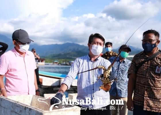 Nusabali.com - bupati-suwirta-kunjungi-balai-brbl-pp