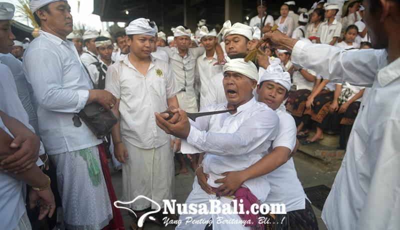 www.nusabali.com-sempat-dua-kali-digelar-secara-ngubeng-sejumlah-pamangku-kerauhan