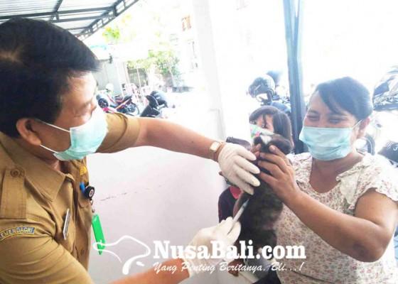 Nusabali.com - buleleng-siapkan-67300-vial-vaksin-rabies