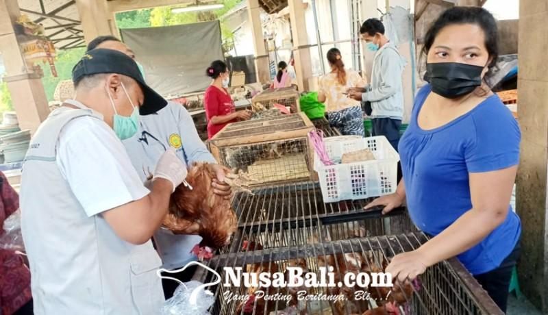 www.nusabali.com-antisipasi-virus-ai-unggas-di-pasar-kumbasari-diawasi