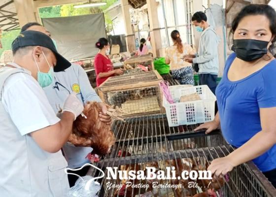 Nusabali.com - antisipasi-virus-ai-unggas-di-pasar-kumbasari-diawasi