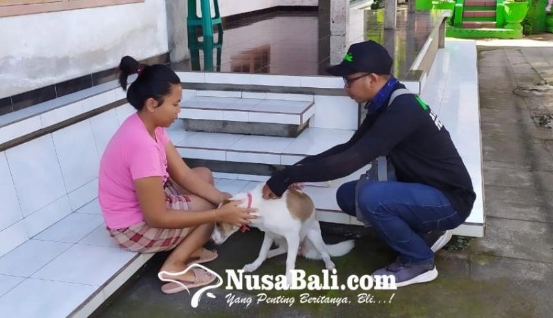 www.nusabali.com-anjing-rabies-gigit-7-warga-nusasari