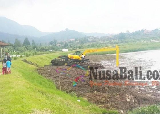 Nusabali.com - danau-buyan-makin-dangkal
