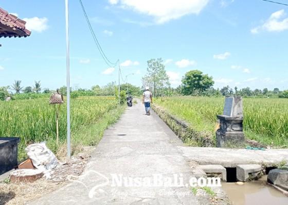 Nusabali.com - sibang-kaja-berencana-kembangkan-jogging-track