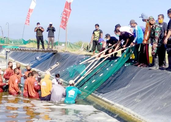 Nusabali.com - sektor-perikanan-dan-pertanian-paling-mampu-bertahan