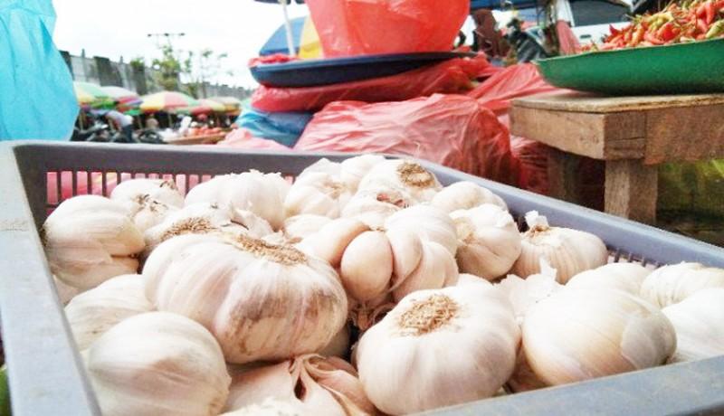 www.nusabali.com-63-perusahaan-belum-tanam-bawang-putih