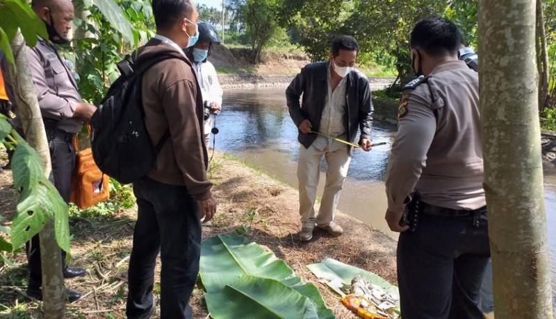 www.nusabali.com-pemancing-temukan-orok-di-dam-tanah-putih