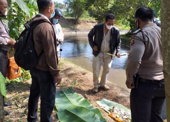 Nusabali.com - pemancing-temukan-orok-di-dam-tanah-putih